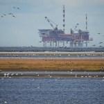 Regulação da indústria de óleo e gás no Mar do Norte foi tema de palestra no RCGI