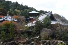 Daijo-in from the hike