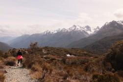 Alpine Nature Walk on Key Summit