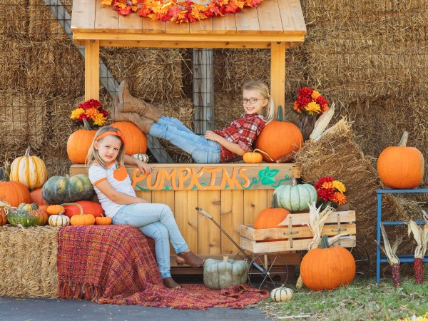 may day photography pumpkin photo booth sneads ferry nc rci plus topsail
