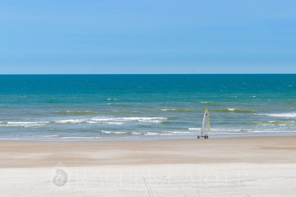 Whike on Topsail Island May 2018 taken by Rachel Carter Images - RCI Plus Topsail