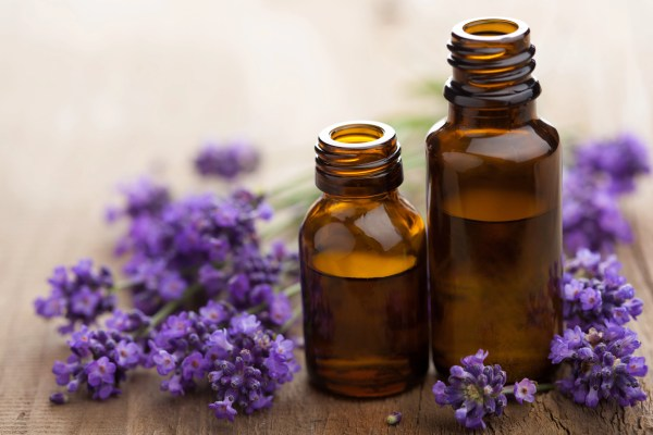essential oil and lavender flowers - repel mosquitos naturally - RCI Plus Topsail