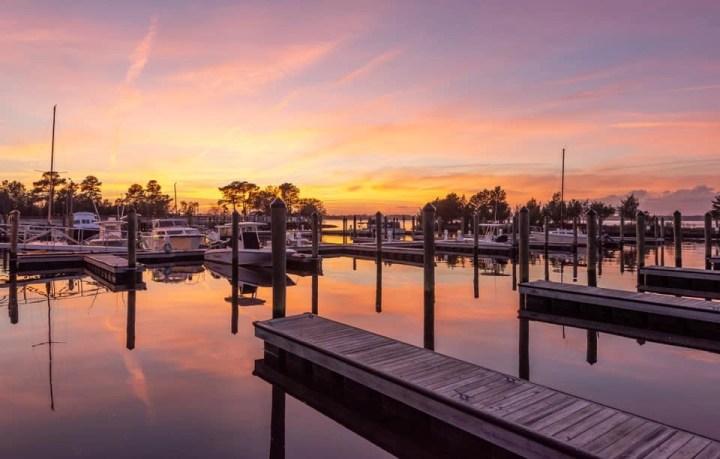 Carolina Beach State Park - RCI Plus Topsail - Cape Fear Reflections by Steve Reynolds
