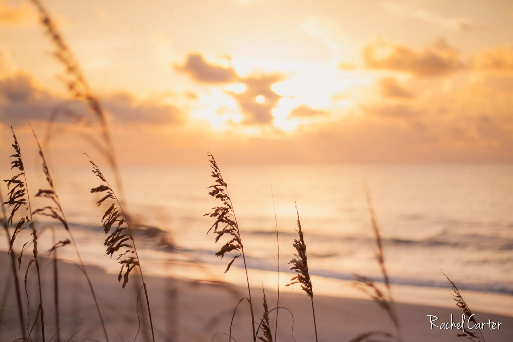 Sunrise in Surf City, NC, taken with a Canon EF 50mm f/1.8 STM Lens - Rachel Carter Images
