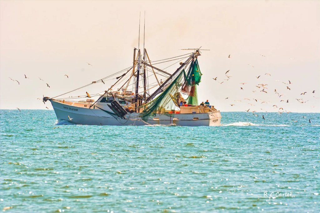 Davis Seafood, North Topsail Beach, captured by Bob Carter