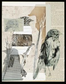 JGregorus #38 Bird Series Photopolymer 14 x 11 $200