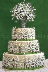 Red Carpet Weddings cakes
