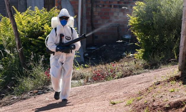Medidas para evitar o Aedes devem continuar no inverno