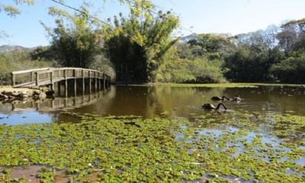 Jardim Botânico comemora 61 anos com programação especial aberta ao público