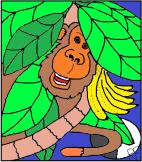 A Monkey Tale