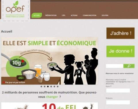 Site Web APEF