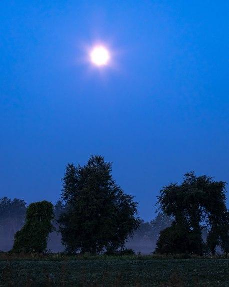 Setting moon 2 -5287