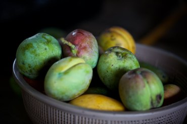 There are no shortage of beautiful fruits here in this region