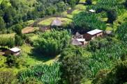 The Ethiopian countryside