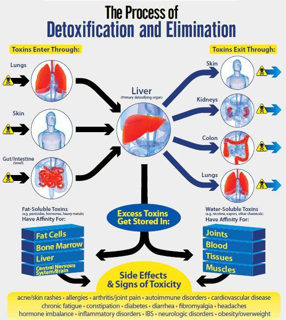 Diatomaceous Food Grade