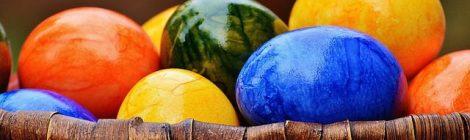 The Use of Nest Egg Guru