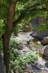 Whitewater Creek