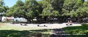 Banyan Court Park