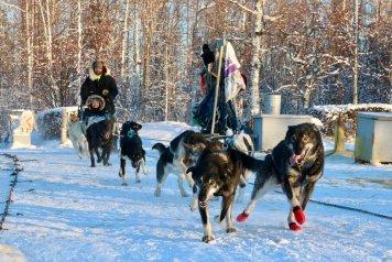 Image result for alaska
