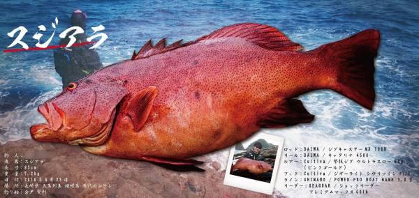 デジタル魚拓完成
