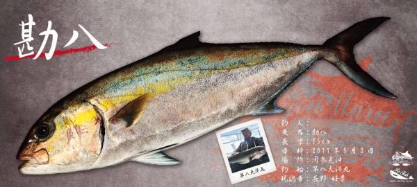 カンパチデジタル魚拓