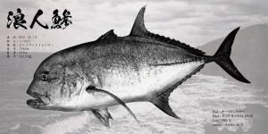 ロウニンアジ魚拓