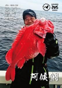 阿候鯛-魚拓