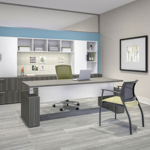 Private Office Designs