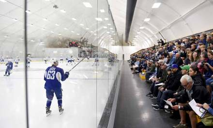 A Better Way to Build Hockey Arenas