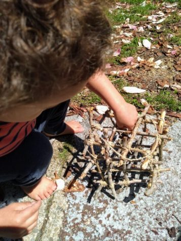 2 year old putting lichen into DIY nesting material box.