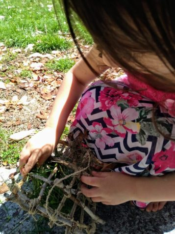Child stuffing grass into a Nesting Material Box.