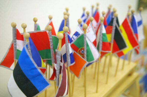 Montessori flag pins