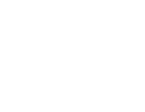 Zak Mirzadeh Logo