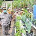 Penerima Bantuan Wajib Berkebun