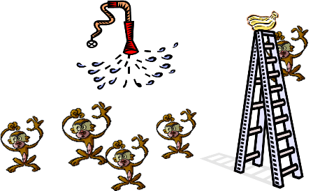 five monkeys image