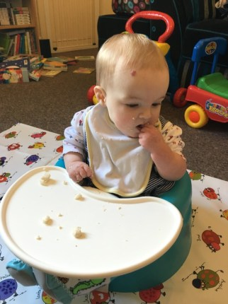baby-led-weaning-spike