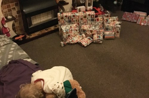 Overwhelmed_By_Christmas_Presents_readaraptor_hatchling