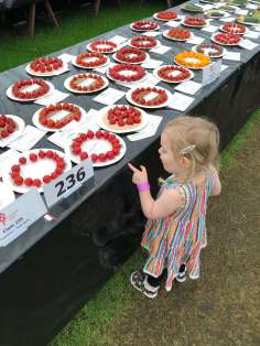 Spike wanting to eat the display tomatoes at Southport Flower Show