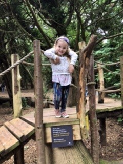 Part of the woods play area at Lowther Castle