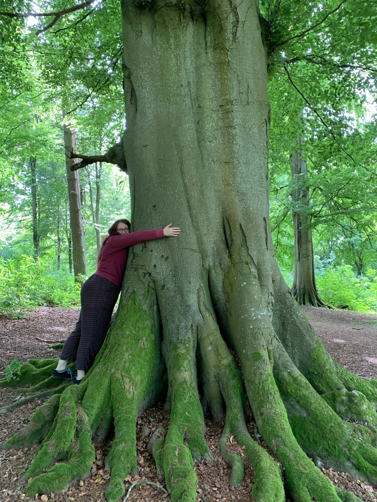 Tree Hugging at Lowther Castle
