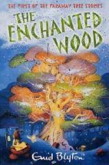 the-enchanted-wood-11