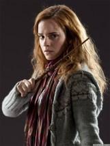 Hermione-Granger-hermione-granger-26743720-960-1280