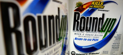 Bottles of Monsanto's Roundup herbicide on a store shelf. (photo: Jeff Roberson/AP)
