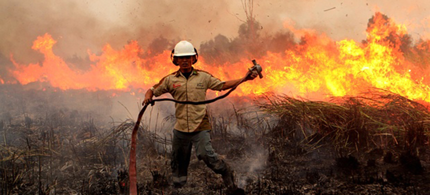 An Indonesian soldier tries to extinguish a forest fire on a peat land at Ogan Komering Ilir in South Sumatra, Indonesia. (photo: Muhammad Fajri/Xinhua Press/Corbis)