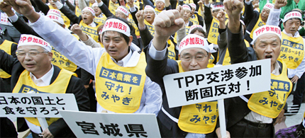 Farmers from Miyagi prefecture raise their fists along with other farmers from across Japan during a rally against Japan participating in rule-making negotiations for the US-led Trans-Pacific Partnership, in Tokyo, 10/26/11. (photo: Yuriko Nakao/Reuters)