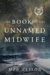 cover for The Book of the Unnamed Midwife