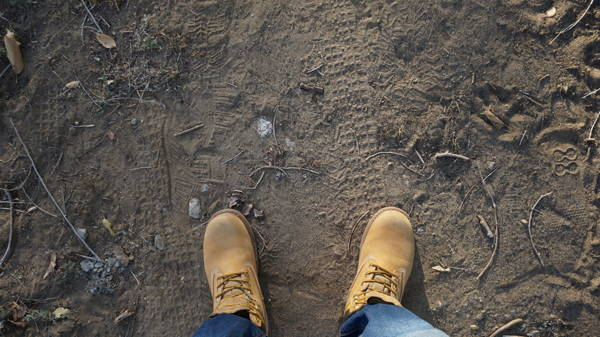 View of feet of person wearing yellow work books standing on a patch of dirt.