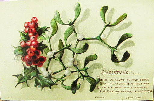 Vintage Christmas card shows light green background with sprig of green holly and red berries crossed with sprig of mistletoe and white berries.