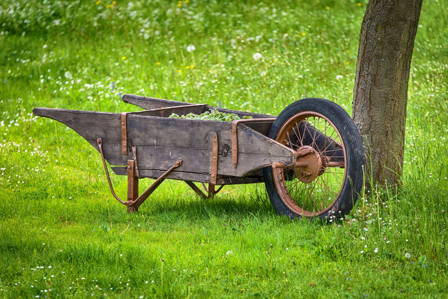 Very old farm barrow made of unfinished wood and iron wheels sitting under tree on green grass.