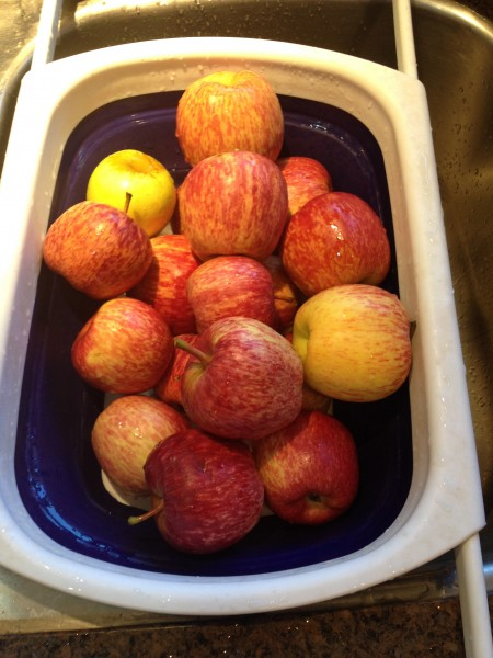 Fall Apple Picking 3